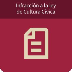 Infracciones a la Ley de Cultura Cívica